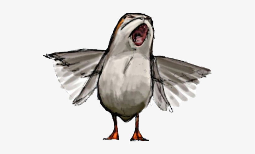Star Wars Porg Drawing PNG Image.