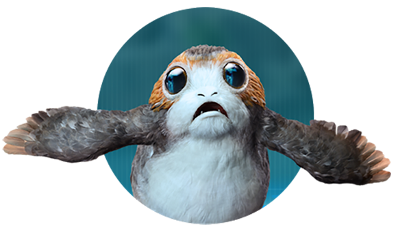 Welcoming Porgs to the Magicverse.