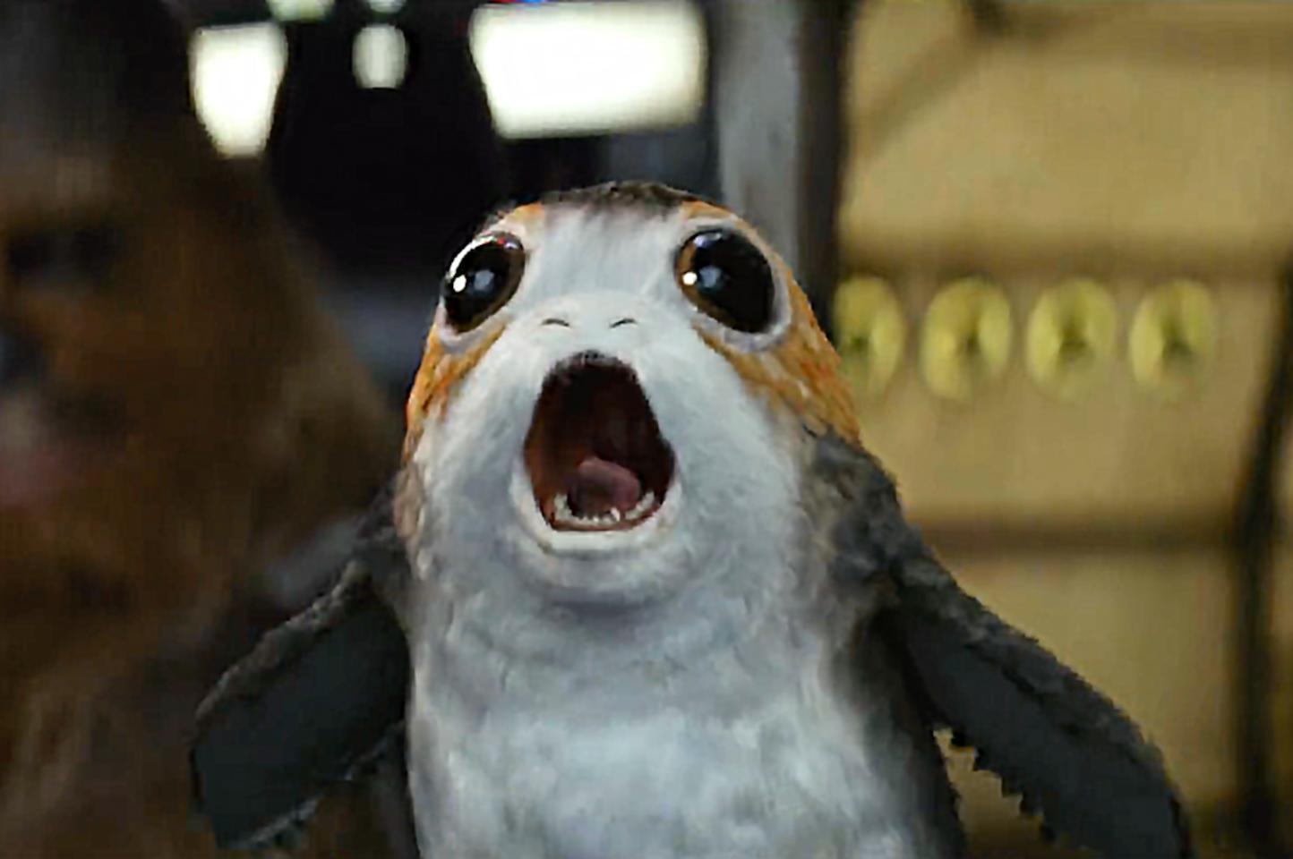The Last Jedi Cast Takes on the Highly Divisive Porgs.