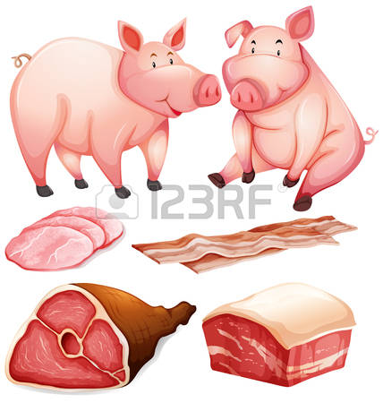 213 Pork Belly Stock Vector Illustration And Royalty Free Pork.