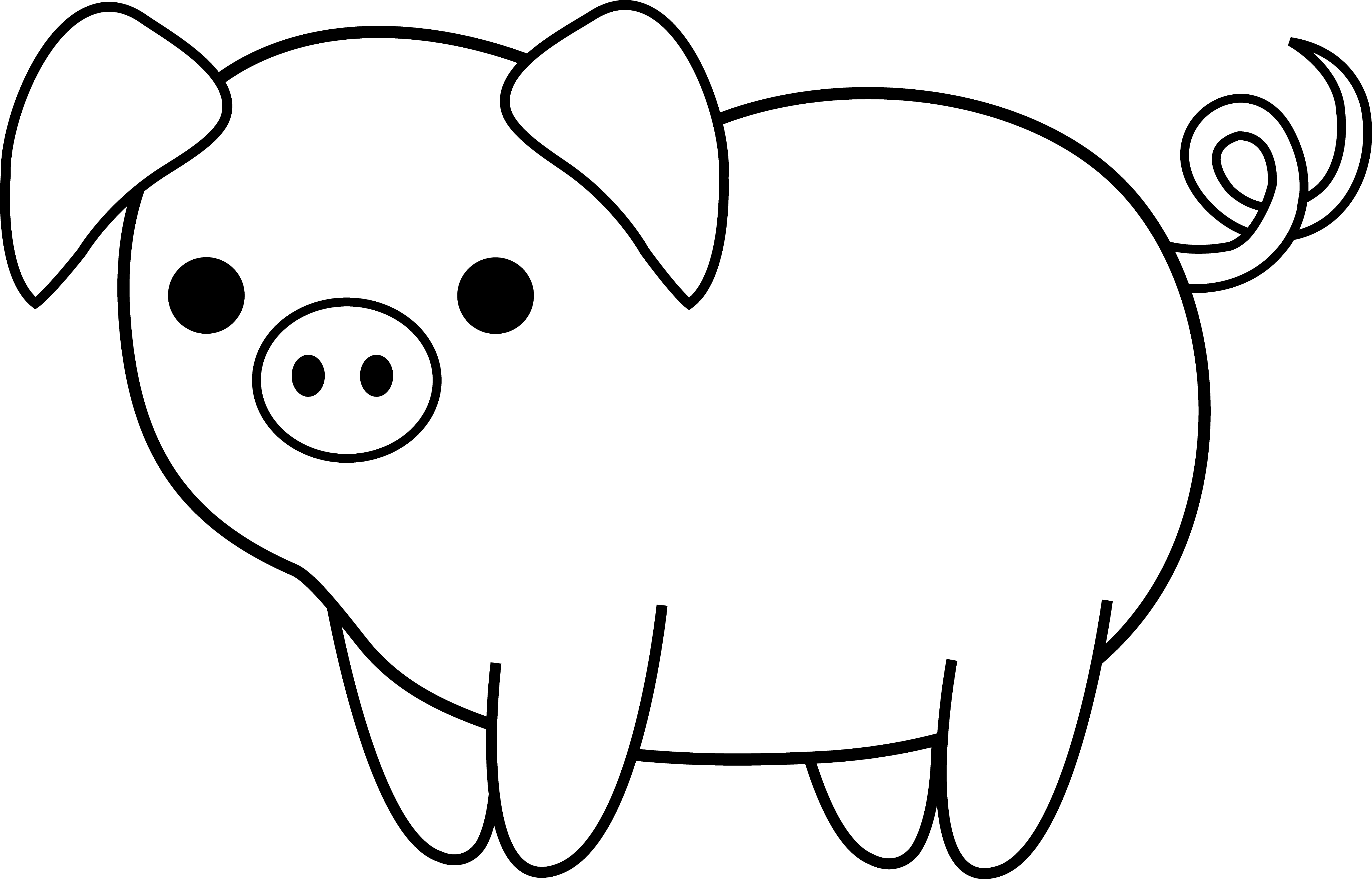 Cute Black and White Pig.