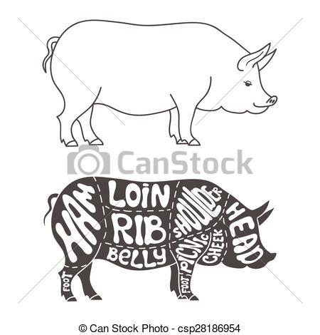 Clipart Vector of Pork cuts diagram. Hand drawn butcher cuts.