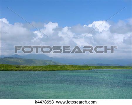 Stock Photo of Coast at Port Douglas, Queensland k4478553.