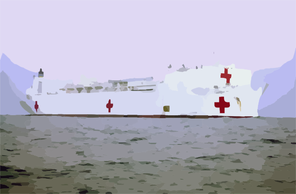 Military Sealift Command Hospital Ship Usns Comfort (t.