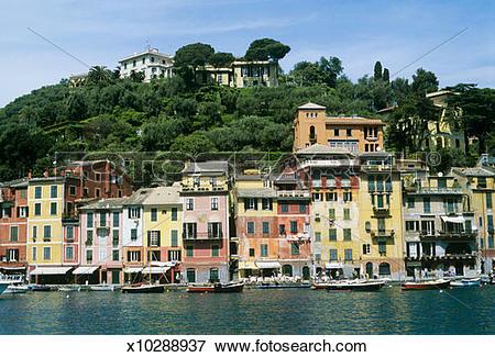 Picture of Italy, Liguria, Portofino, Houses by harbor x10288937.