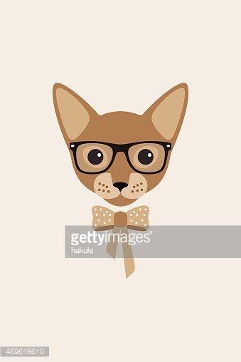Fashion Portrait of Cat, Yellow Elegant Cat Like A Girl stock.