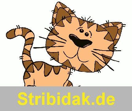 1000+ ideas about Getigerte Katze on Pinterest.