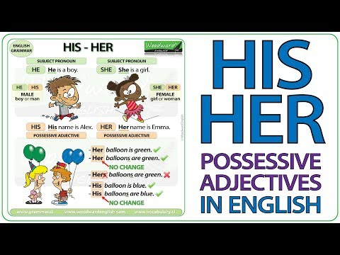 Possessive Adjectives in English Grammar.
