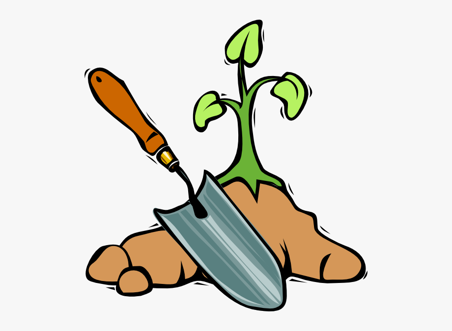 Clipart Of Director, Possibility And Seeds.