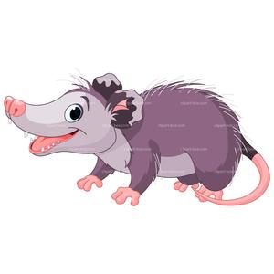 Clipart Possum.