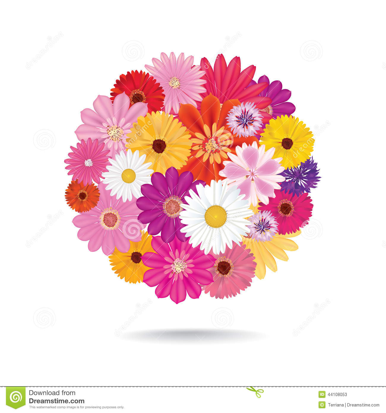 Flower Bouquet. Floral Posy Isolated On White Background. Stock.