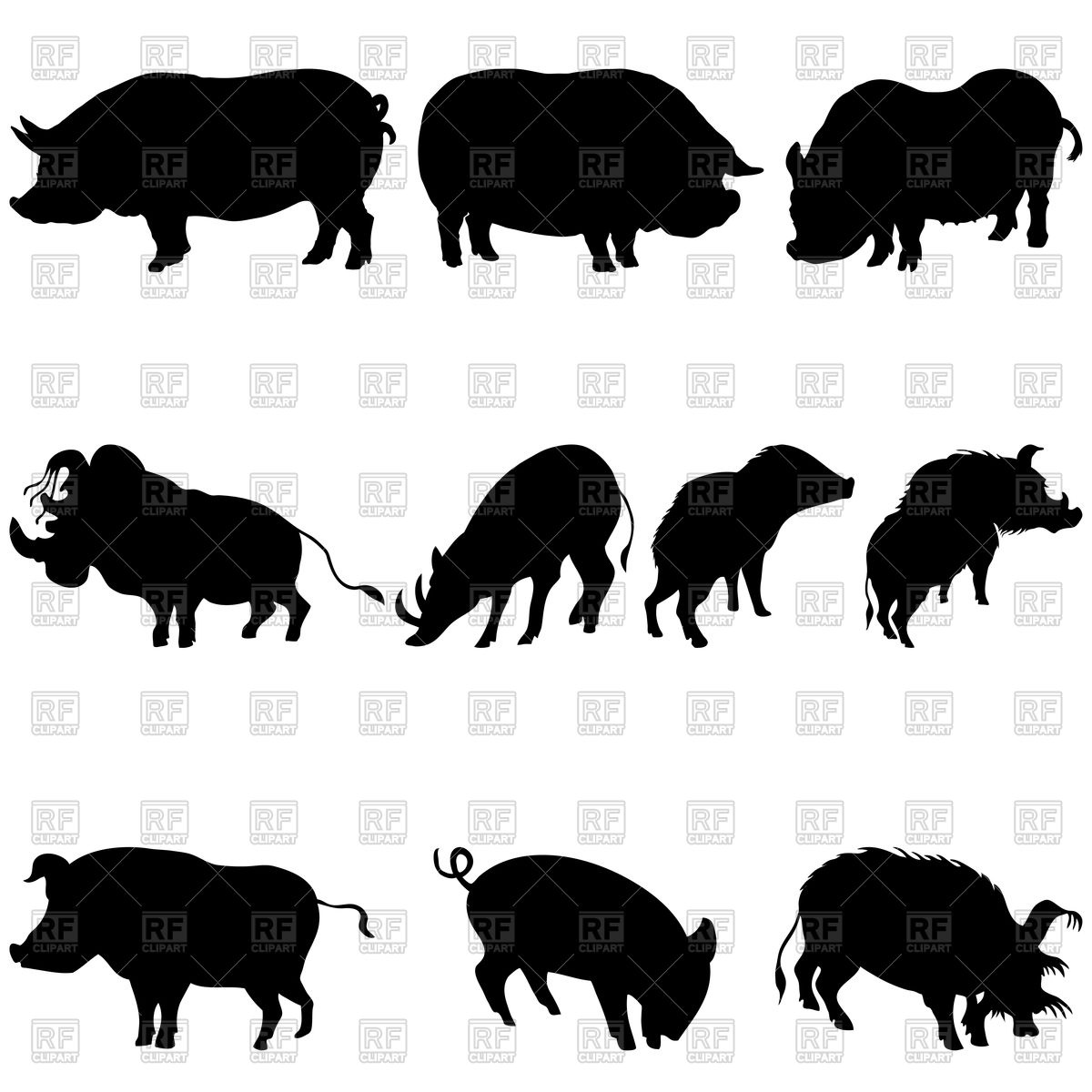 Cartoon fat pig Vector Image #8204.