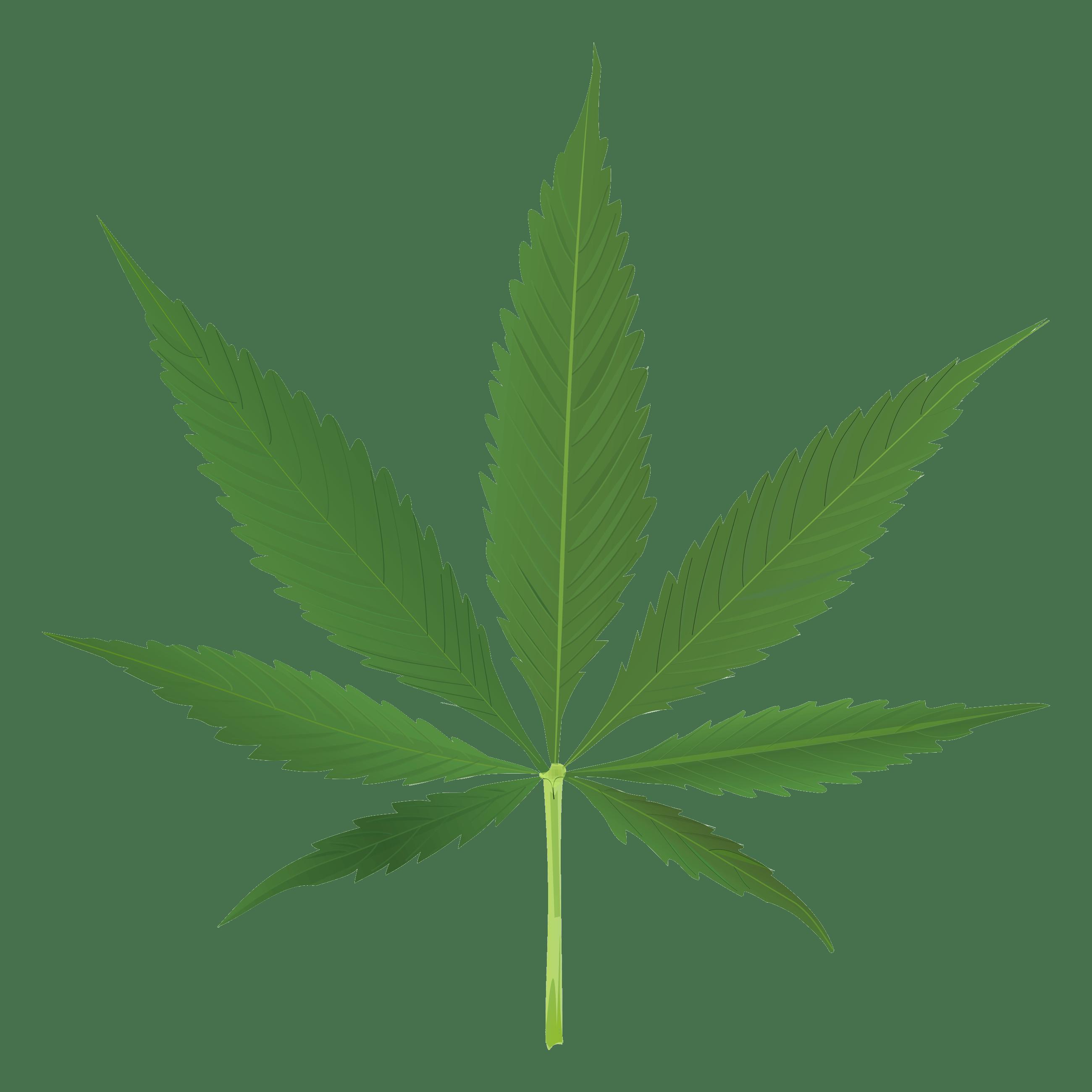 Thug Life Weed Leaf transparent PNG.