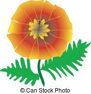 Pot marigold Vector Clip Art Royalty Free. 24 Pot marigold clipart.