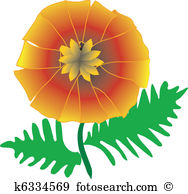 Pot marigold Clip Art Vector Graphics. 20 pot marigold EPS clipart.