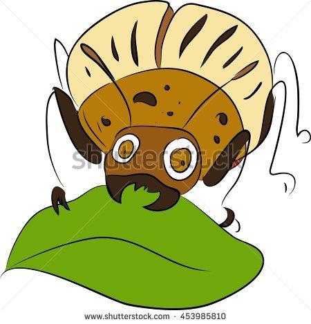 """potato Bug"""" Stock Photos, Royalty."""