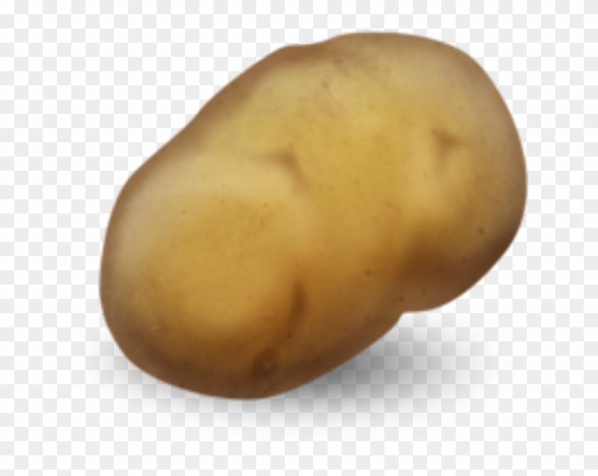 Potato Png Download.