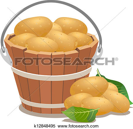 Clipart of Potatoes and potato field. Vector illustration.