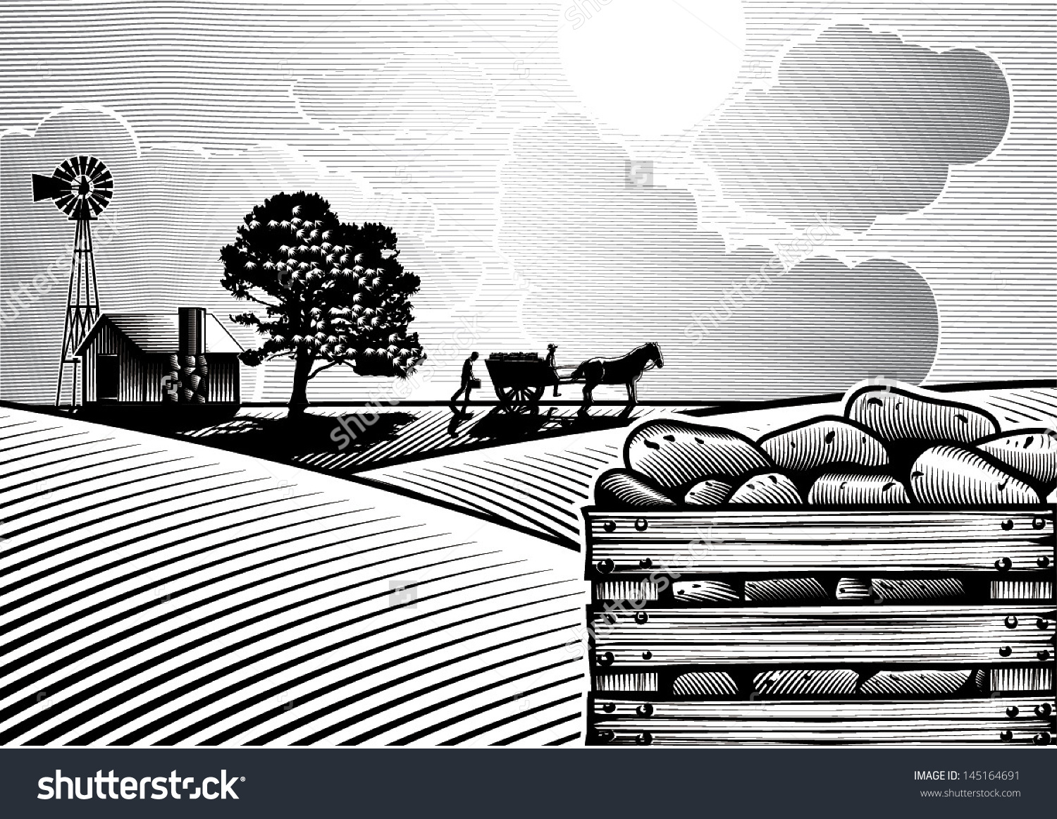 Potato Field Woodcut Style Vector Stock Vector 145164691.