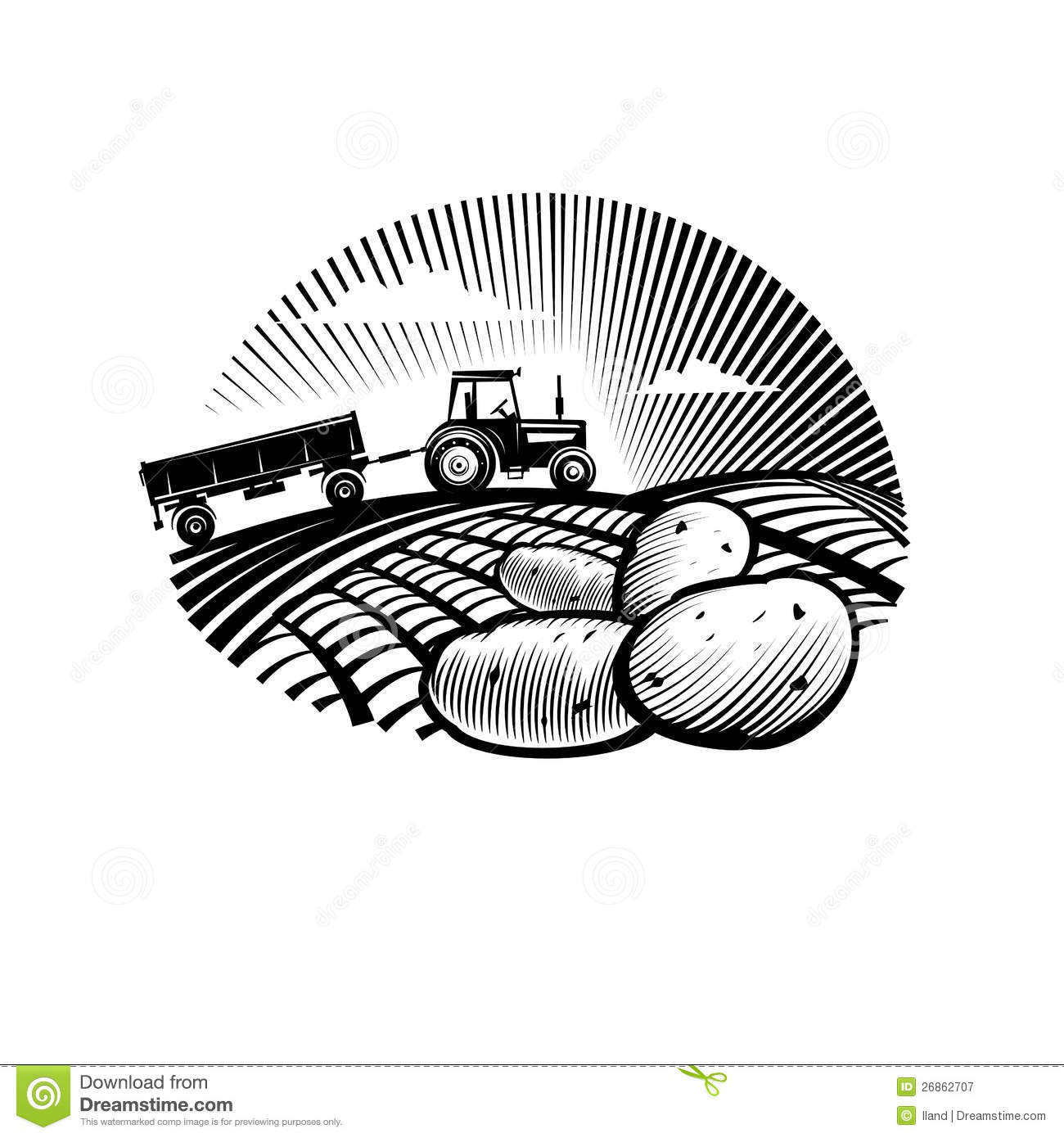 Potato Against Farm Tractor In A Field Royalty Free Stock.