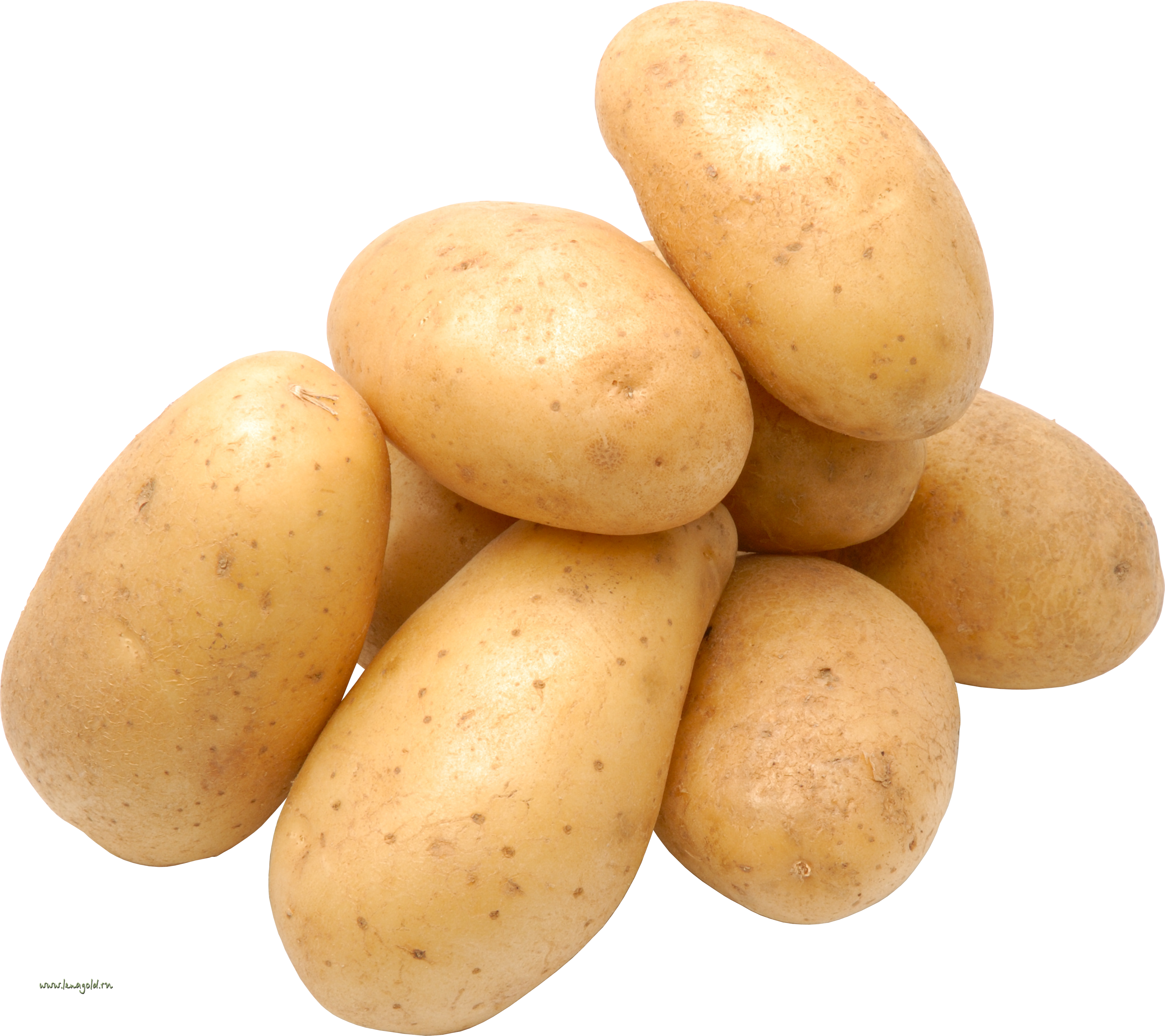 potato PNG image, free picture.