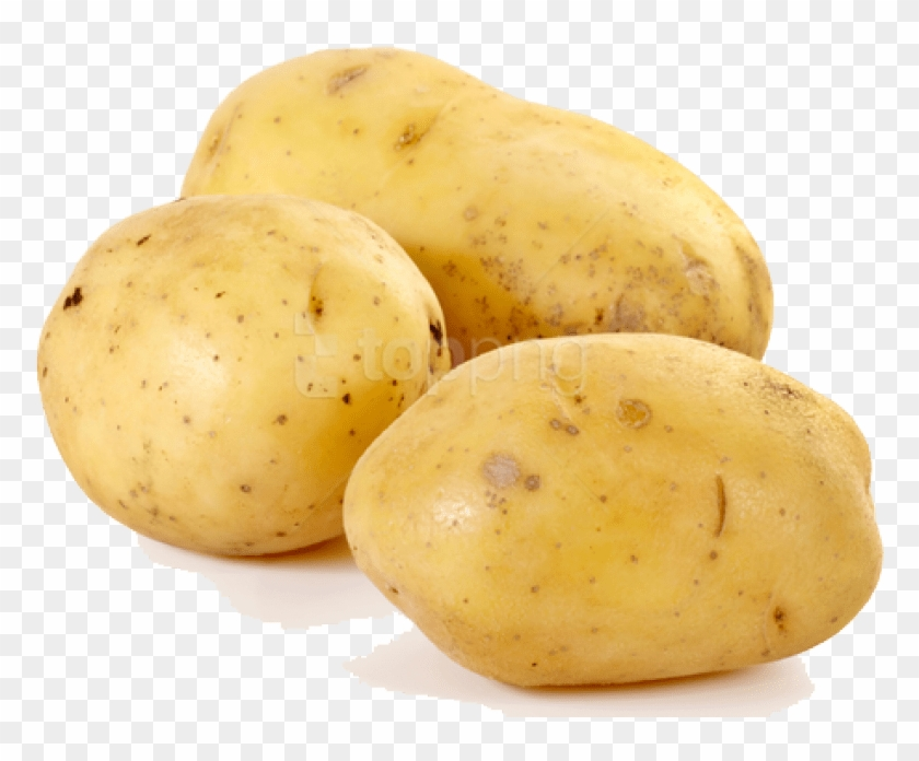 Free Png Download Potato Png Images Background Png.