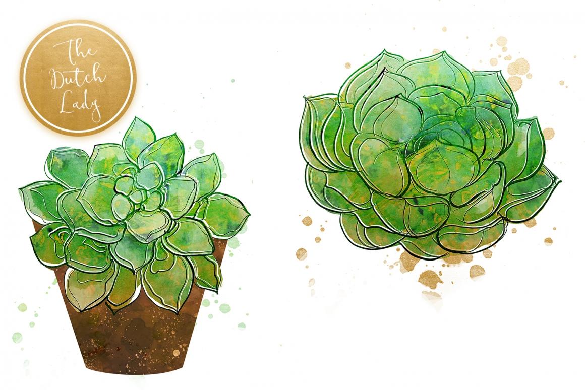 Succulent Potted Plant Clipart Set.