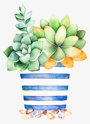 Succulent PNG, Transparent Succulent PNG Image Free Download.