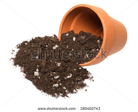 Potting Soil Stock Photos, Royalty.