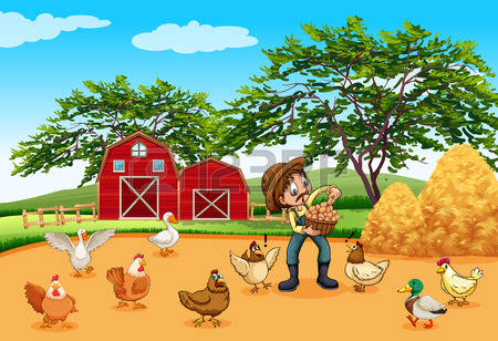 13,317 Poultry Farm Stock Vector Illustration And Royalty Free.