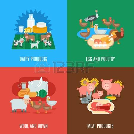12,029 Poultry Farm Stock Vector Illustration And Royalty Free.