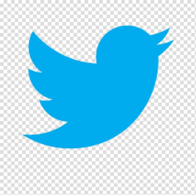 Social media PR Newswire Advertising Content Organization.