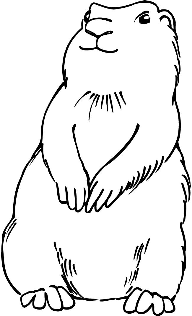 Prairie Dog Clip Art Free.