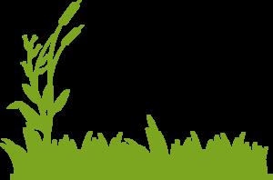 Prairie OR Field OR Wheat OR Grass.