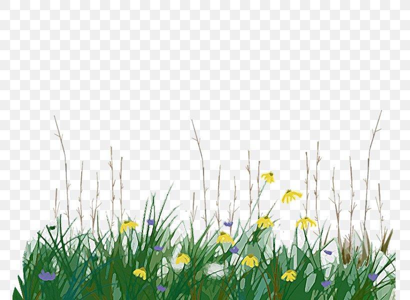 Temperate Grasslands, Savannas, And Shrublands Tallgrass.
