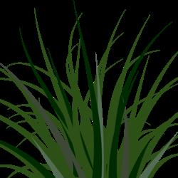 Prairie Grass Clipart.