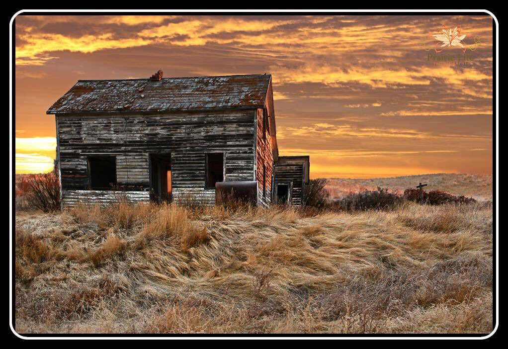"Prairie Life Photo on Twitter: ""#Saskatchewan sunrises are as."