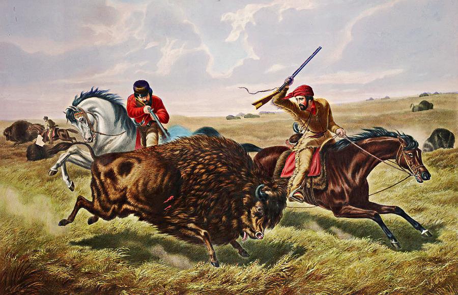 Life on the Prairie The Buffalo Hunt.
