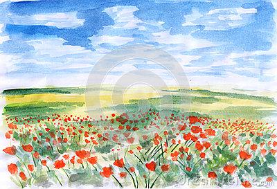 Prairie Grass Flowers Stock Illustrations.