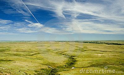 Ground Of Prairie Dogs Stock Image.