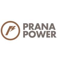 Prana Power, S.A.P.I. de C.V. (Prana Power).