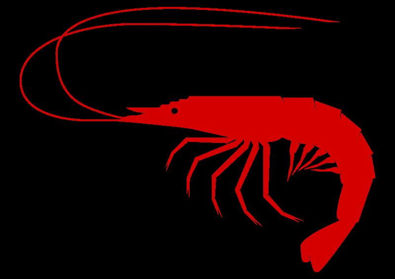 Free to Use & Public Domain Shrimp Clip Art.