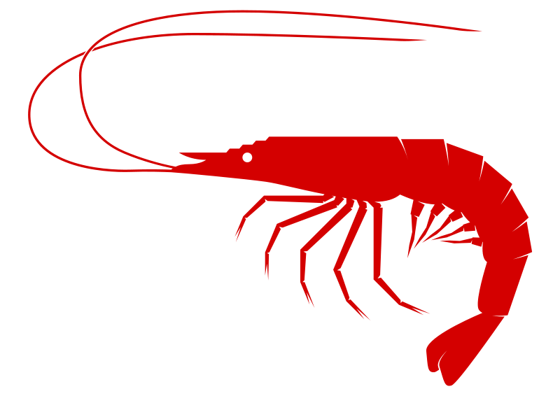 Prawn Fish Clipart.