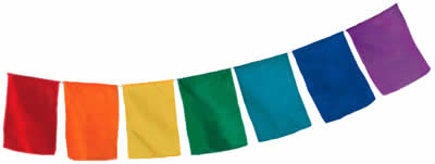 Blank 7 Flag Set.