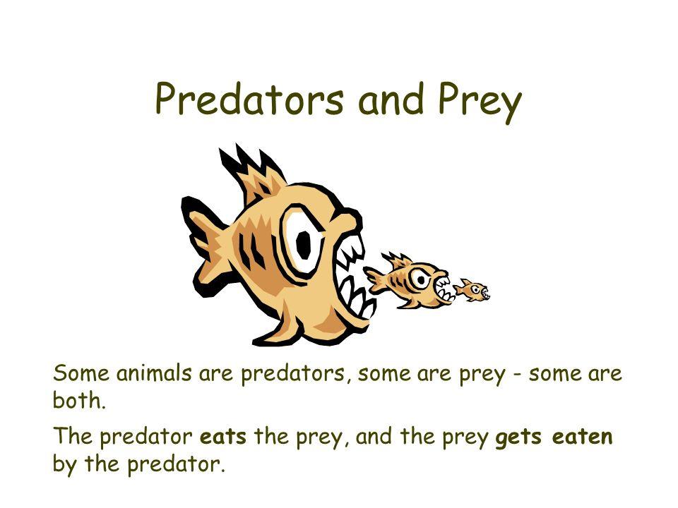 Predator and prey clipart.