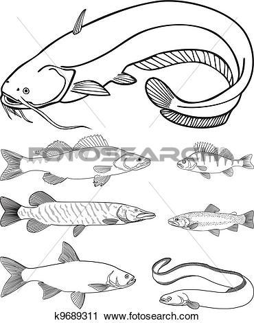 Clipart of Predatory freshwater fish k9689311.