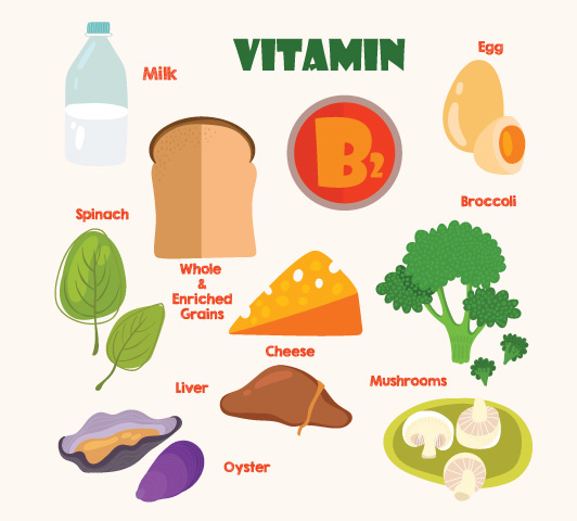 Vitamin B Complex During Pregnancy: Why They Are Important.
