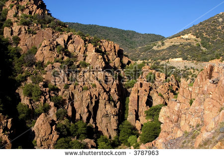 Prescott National Forest Stock Images, Royalty.