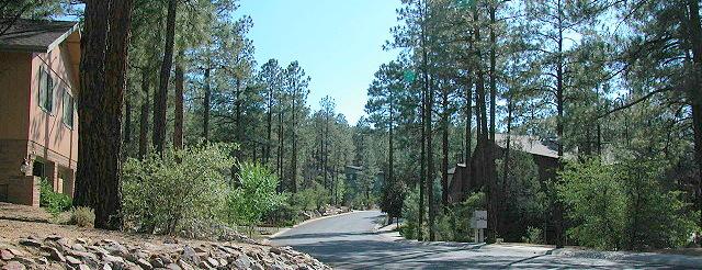 Homes for Sale in the Pines Prescott AZ.
