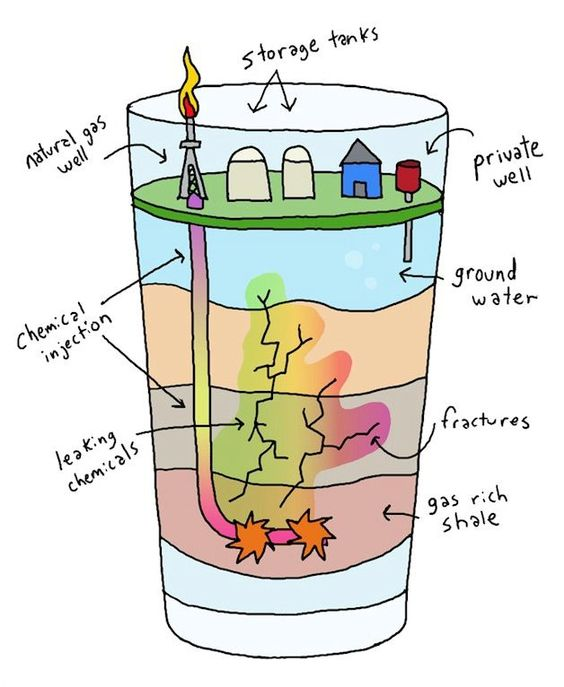 What's In Your Water? (Cartoon).
